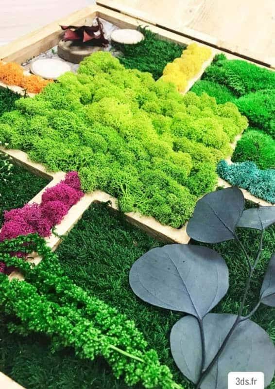Cadre végétal mousse boule et lichen